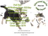 Sherwood Barks Doggy Day Care & Training Center
